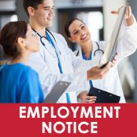 notice of employment